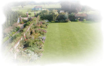 Square Lawn & flower Borders